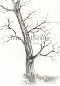 Branchy Tree Sketch | Image 1a