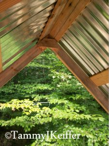 Cabin Loft & Roof | Image 6