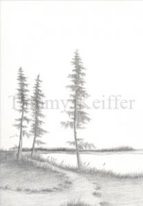 Lakeside Sketch | Image 3
