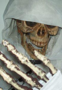 Mr Bones | Image 3