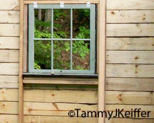 Off Grid Cabin | Image 2