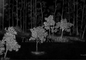 Forest Sketch | Image 3