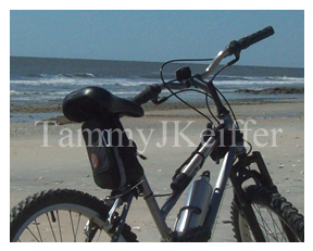 Mutt Bike On The Beach