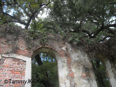 Old Sheldon Ruins | Image 26