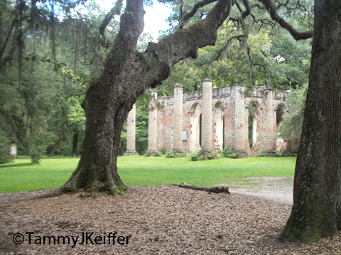 Old Sheldon Ruins | Image 29