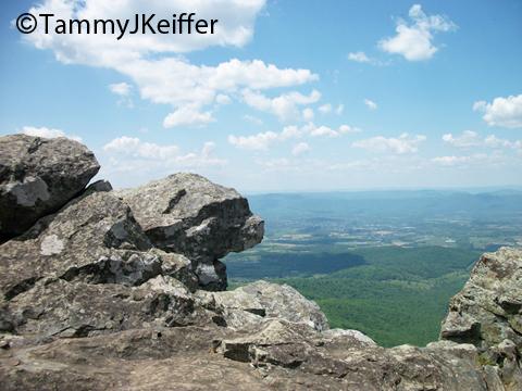 Shenandoah Skyline Mtn Top   Image 1