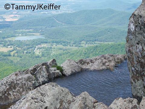 Shenandoah Skyline Mtn Top   Image 4