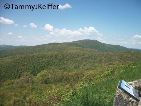 Shenandoah Skyline Mtn Top   Image 12
